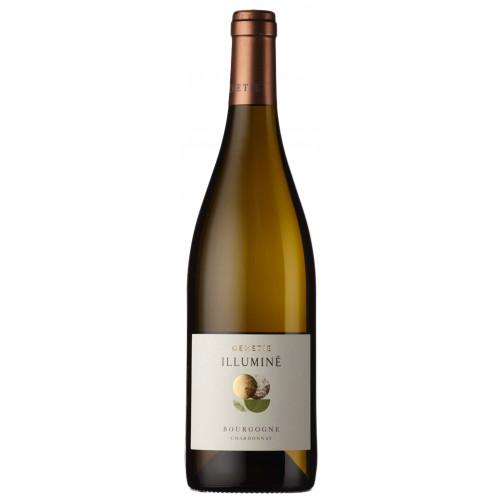 10141980 - GENETIE Bourgogne Blanc Illumine