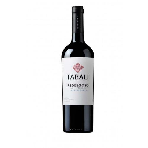 Blas ar Fwyd: Vina Tabali Pedrogoso Reserva Cabern
