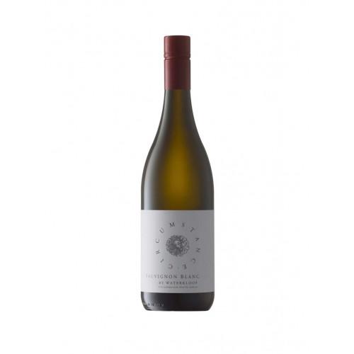 Blas ar Fwyd: Circumstance Sauvignon Blanc